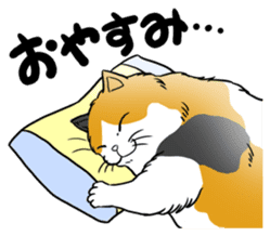 Cat Sumo Wrestlers sticker #11017328