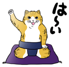 Cat Sumo Wrestlers sticker #11017330