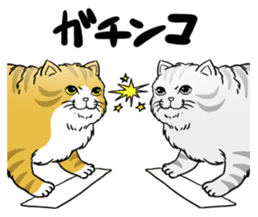 Cat Sumo Wrestlers sticker #11017335
