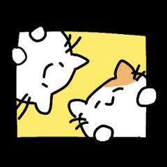 Sticker of the white kitten