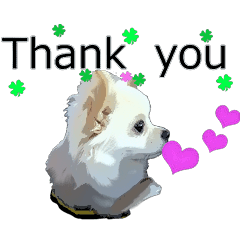 Sticker of Chihuahua for everyday use