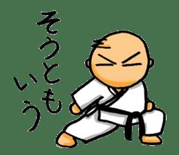KARATE BOY LIFE sticker #11074278