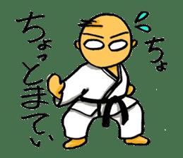 KARATE BOY LIFE sticker #11074286