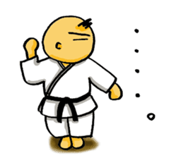 KARATE BOY LIFE sticker #11074294