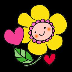 Pretty healing flowers