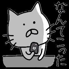 Playful loose cat