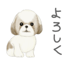 Shih Tzu communication sticker sticker #11174424