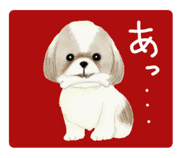 Shih Tzu communication sticker sticker #11174425