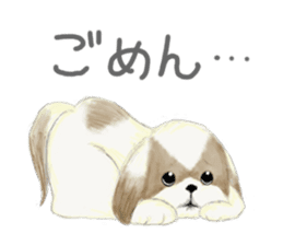 Shih Tzu communication sticker sticker #11174427