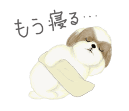 Shih Tzu communication sticker sticker #11174430