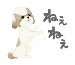 Shih Tzu communication sticker sticker #11174431