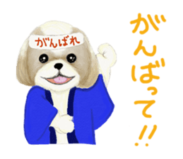Shih Tzu communication sticker sticker #11174455