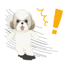 Shih Tzu communication sticker sticker #11174460