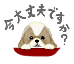 Shih Tzu communication sticker sticker #11174462