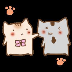 Conversation of chillin loose cat