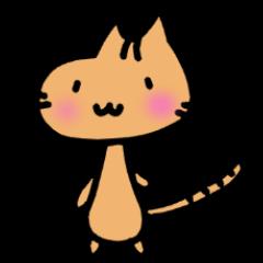 nomal cat