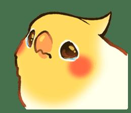 Coca Bird.2 sticker #11205401