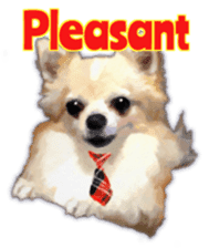 Komaru of a Chihuahua 2 (English) sticker #11252874