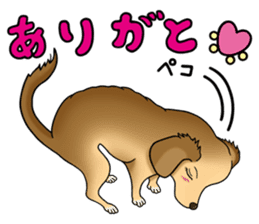 Chiroru's daily life. sticker #11253201