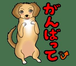 Chiroru's daily life. sticker #11253203