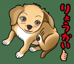 Chiroru's daily life. sticker #11253204