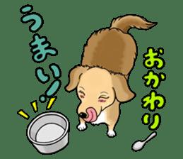 Chiroru's daily life. sticker #11253219