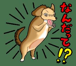 Chiroru's daily life. sticker #11253221