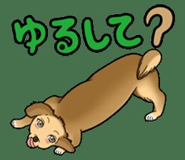 Chiroru's daily life. sticker #11253225