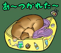 Chiroru's daily life. sticker #11253228