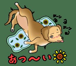 Chiroru's daily life. sticker #11253231