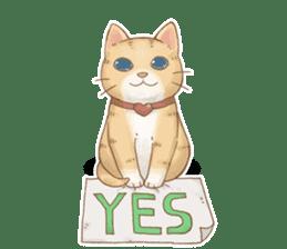 Cat's LifeStyle (English Ver.) sticker #11289692