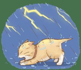 Cat's LifeStyle (English Ver.) sticker #11289703