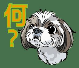 Yorkshire Terrier and Shih Tzu sticker #11313382
