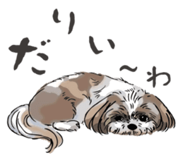 Yorkshire Terrier and Shih Tzu sticker #11313384