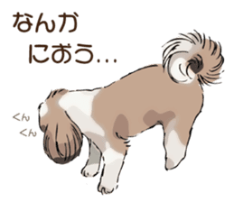 Yorkshire Terrier and Shih Tzu sticker #11313386