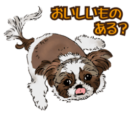 Yorkshire Terrier and Shih Tzu sticker #11313399