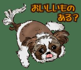 Yorkshire Terrier and Shih Tzu sticker #11313399