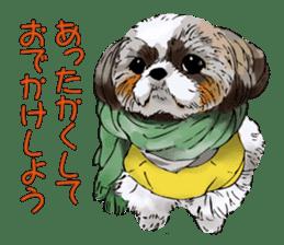 Yorkshire Terrier and Shih Tzu sticker #11313400