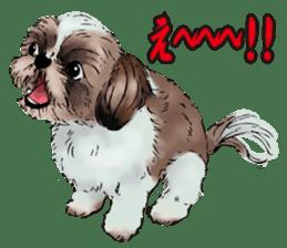 Yorkshire Terrier and Shih Tzu sticker #11313403