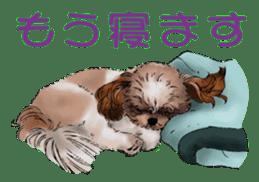 Yorkshire Terrier and Shih Tzu sticker #11313407