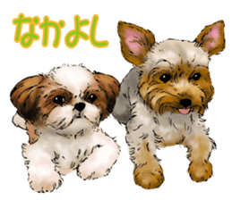 Yorkshire Terrier and Shih Tzu sticker #11313415