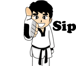 taekwondo boy 1 sticker #11317139
