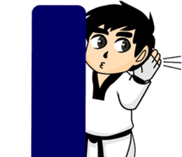 taekwondo boy 1 sticker #11317145