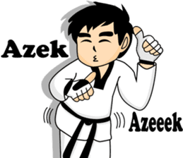 taekwondo boy 1 sticker #11317151