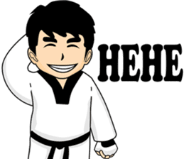 taekwondo boy 1 sticker #11317154