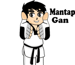 taekwondo boy 1 sticker #11317170