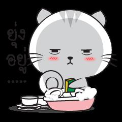 Mr. cat 2 (TH)