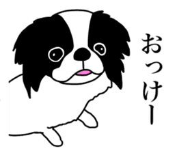 I love Japanese Chin sticker #11320457