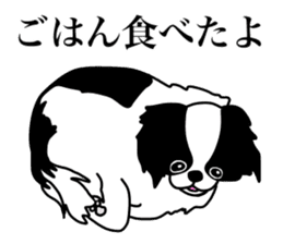 I love Japanese Chin sticker #11320486