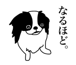 I love Japanese Chin sticker #11320493